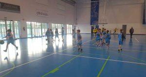 SDR Arenas Baloncesto