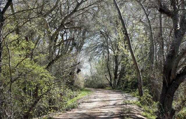 Los alrededores de Buñuel ofrecen parajes tan sugerentes como este