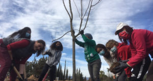 Voluntarios que ayudaron a hacer realidad la nueva arboleda en El Villar