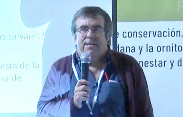 José Antonio Donázar, Premio de Medio Ambiente 2020